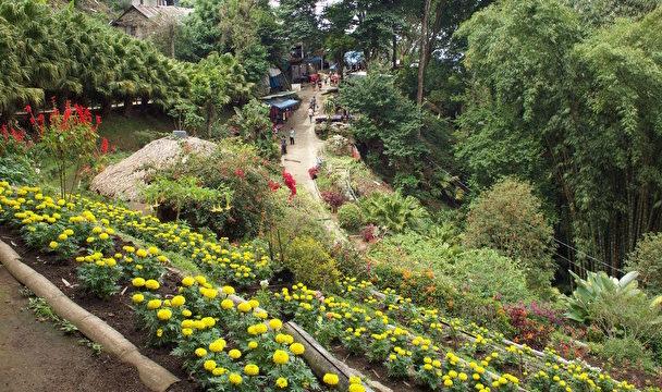 ドイプイ庭園